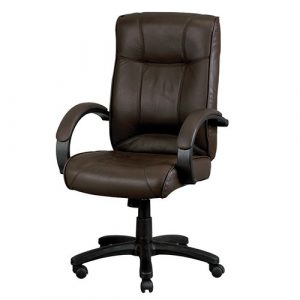 Odyssey Brown Leather Eurotech Executive Seating