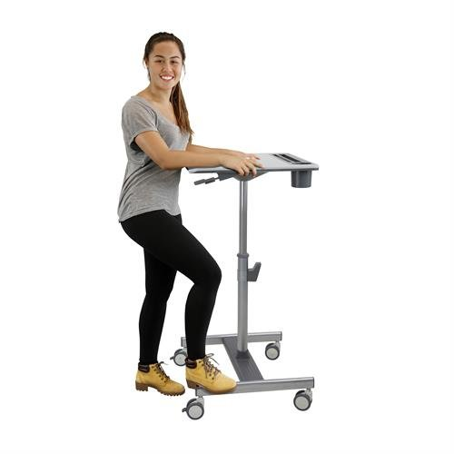 LearnFit Sit Stand Mobile Workstation