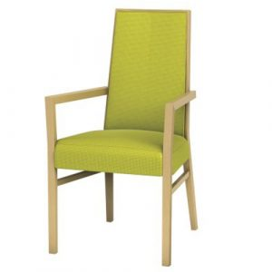 Cara Chairs - Arm Chair