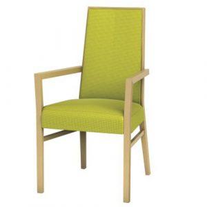 Cara Chairs - Arm Chair