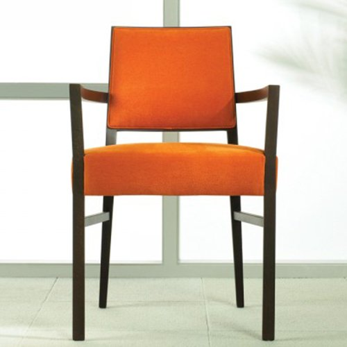 Chloe ArmChair Upholstered Back in Scene