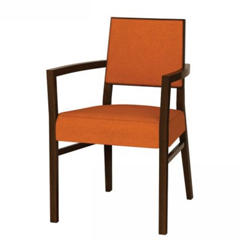 Chloe ArmChair Upholstered Back